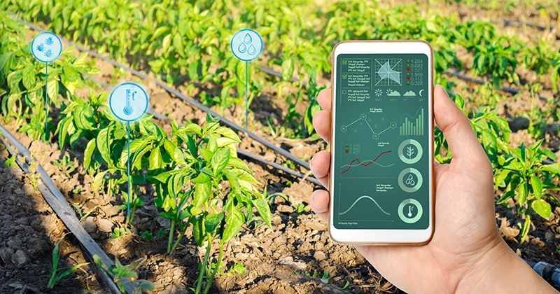 Why do we need smart irrigation