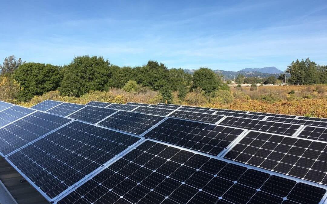 1kw solar panel