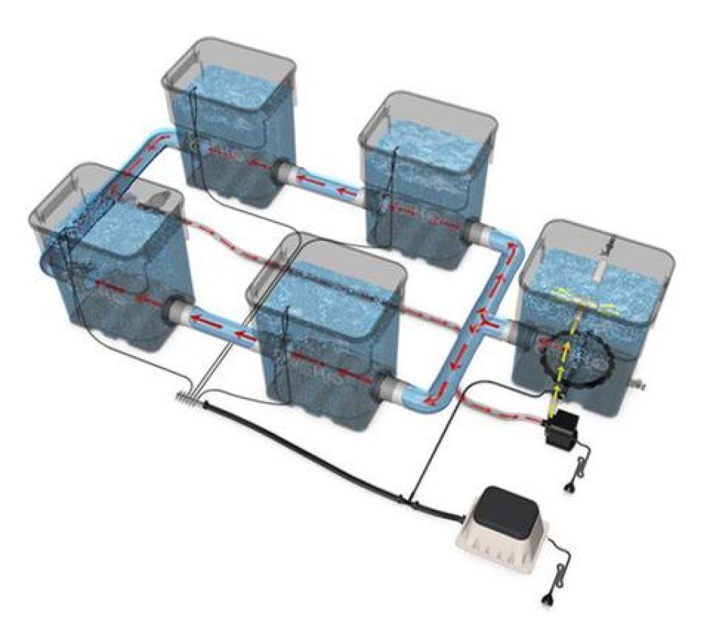 Recirculating Deep Water Culture System